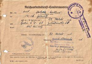 Reichsarbeitsdienst-Sonderausweis